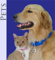 A dog and cat wearing their Top Tag Pet IDs